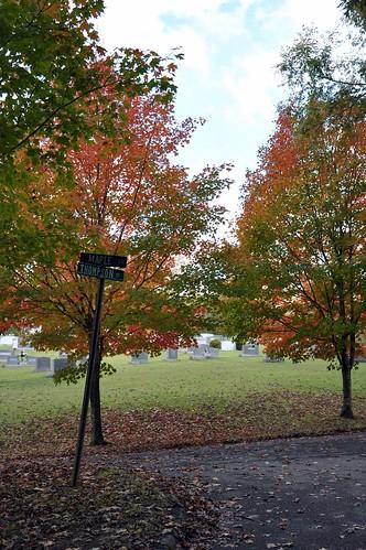 trees fall colors cemetery nikon fallcolors roadsign d90 shelbync sunsetcemetery