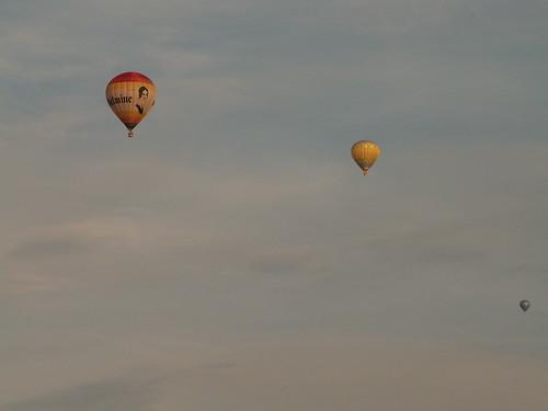 Wenige Meilen vom Ballon entfernt, heulen und gestrikulieren etwa dreißig Individuen lebhaft und machen Luftsprüngen, einige sind bis auf die höchsten Zweige des Baums geklettert und es drohen Gefahren  015