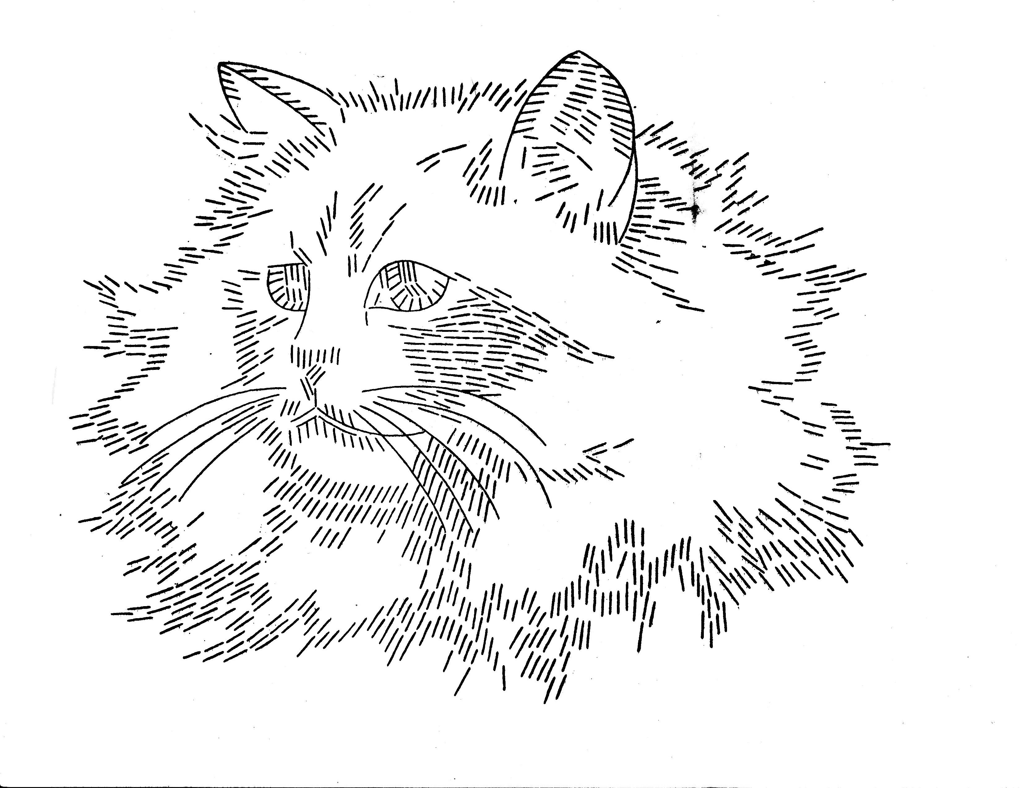 LW 1243 cat 2