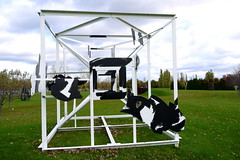 outdoor play equipment,