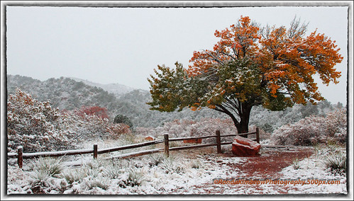 When Fall and Winter Collide