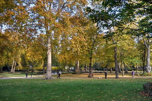 Autumn - Changing seasons in Russell Square by Palojono