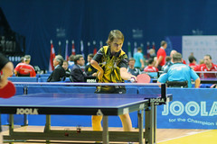 individual sports, table tennis, sports, ball game, racquet sport, para table tennis,