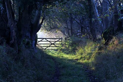 morning southwales wales sunrise gate sunburst hook sunstream pembrokenationalpark easthookfarm