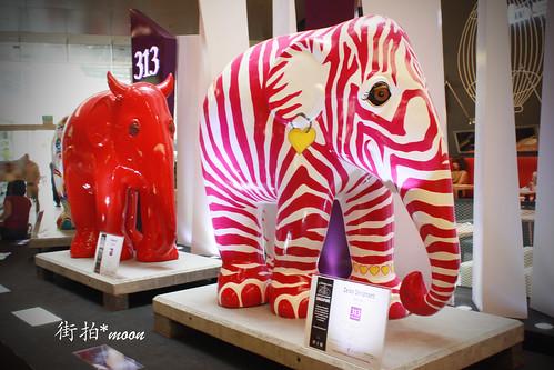 彩繪的大象 by moon_o