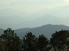 高尾山20111124-078