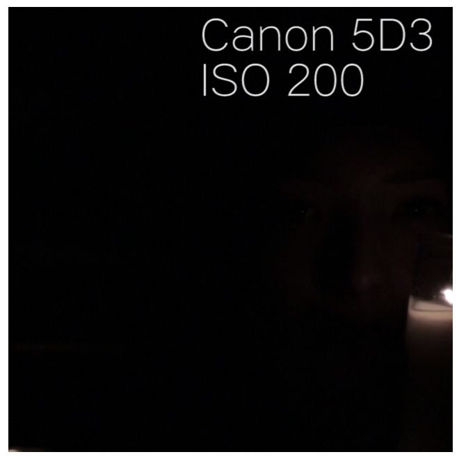 canon5d3_iso200_100percentcrop