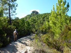 Départ de la randonnée sur piste : Punta Belliche