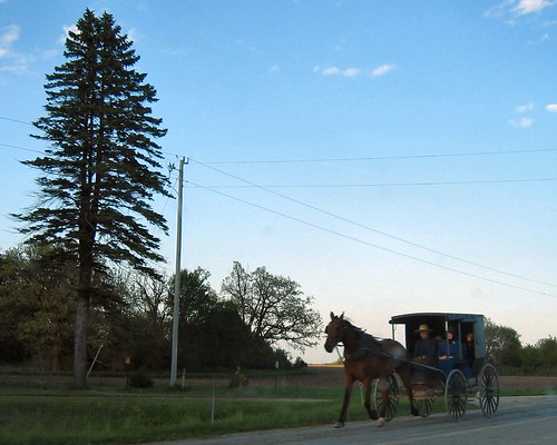 Amish Horse-Drawn Carriage