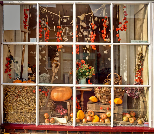 1000 images about autumn window display ideas on for Boutique window display ideas