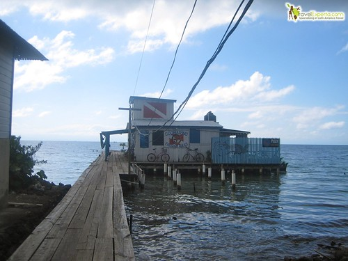 Dive Shop and PADI Certifications on Utila Honduras