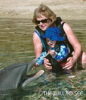 dolphin - will