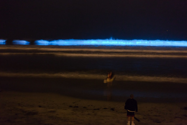 Red tide bioluminescence in san diego flickr photo for Tides for fishing san diego