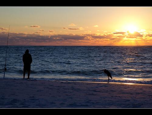 sunset gulfofmexico fisherman florida explore ami fl blueheron annamariaisland efs1755mmf28isusm canonrebelt2i