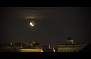 Staring at the moon [Explored]