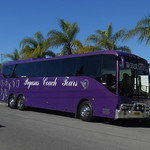 Pegasus Coach Tours