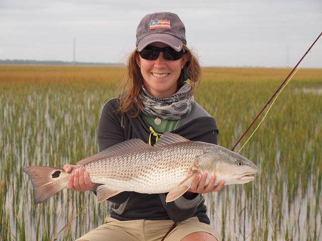 Fish facts redfish sciaenops ocellatus orvis news for Redfish fly fishing