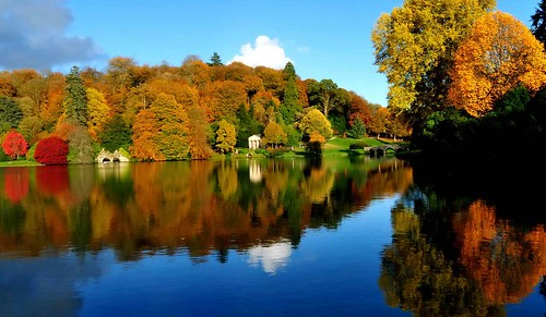 Stourhead Autumn Plummage