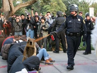 Crash UC Davis