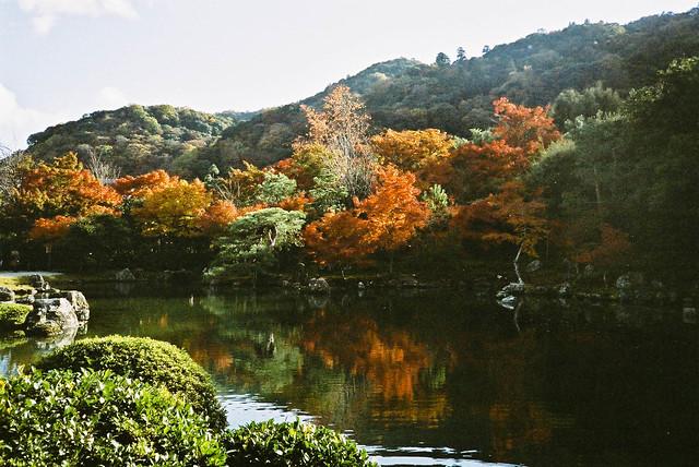 天龍寺的枯山水庭院