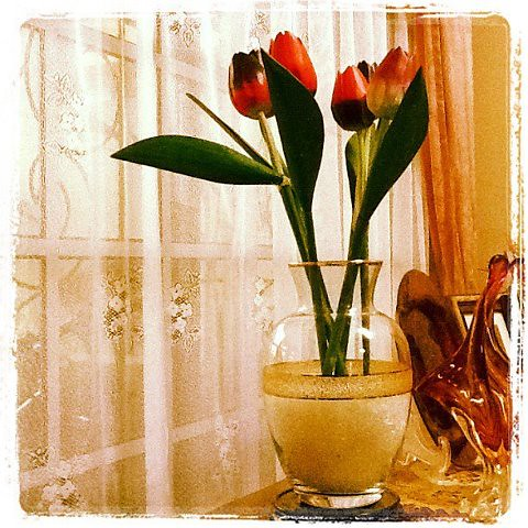 instagram2:Wooden tulips by Adibi