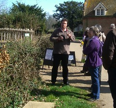 Discussing Young Elm Hedge, Heritage Tree Surveyor Course