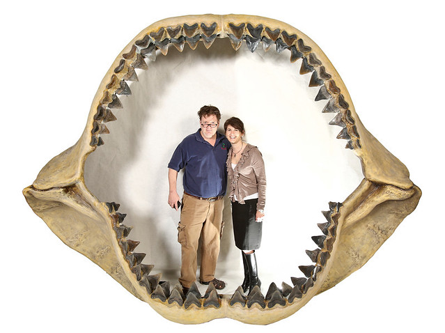 On the Discovery Channel's megalodon bungle: In defense of