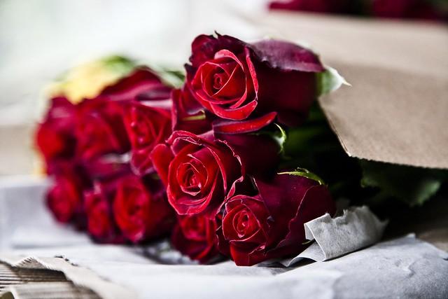 بأجمل باقات الورد والياسمين نستقبلك:يا شموخ 6213978959_a9b66ed04