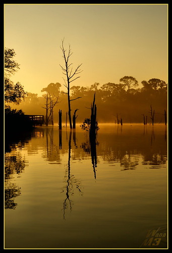 park sun sunlight reflection silhouette sunrise golden texas explore bayou boardwalk pasadena daybreak moring naturesfinest bayareapark armandbayou wanam3