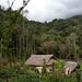 Výzkumná biologická stanice na Papui-Nové Guineji - tábor v pralese, foto: Vojtěch Novotný