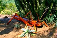 Grasshopper sculpture