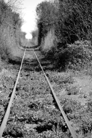 Autor: locoporlasfotos