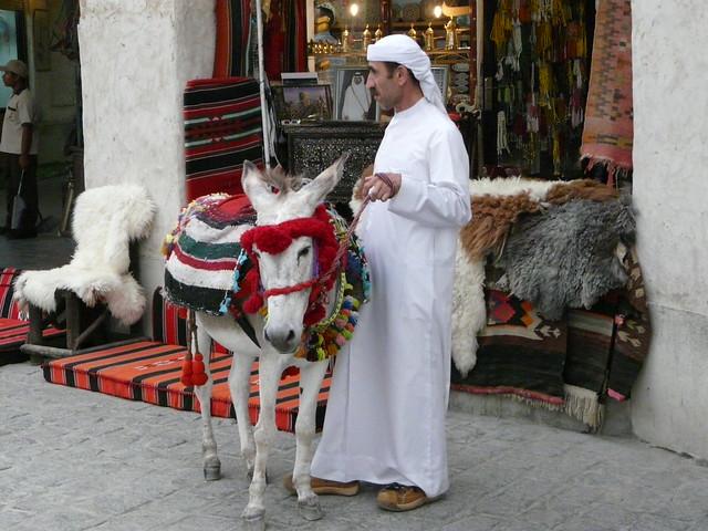 Hombre y burro en Doha (Qatar)