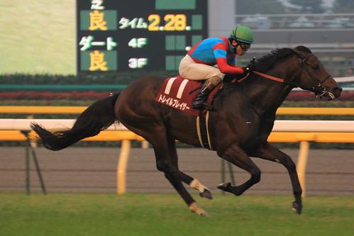 アルゼンチン共和国杯勝ち馬 トレイルブレイザー(安藤勝己)3