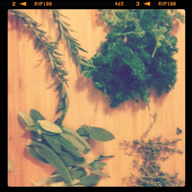 Instagram - parsley, sage, rosemary, thyme