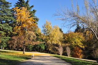 http://hojeconhecemos.blogspot.com/2011/11/parque-do-oeste-madrid-espanha.html