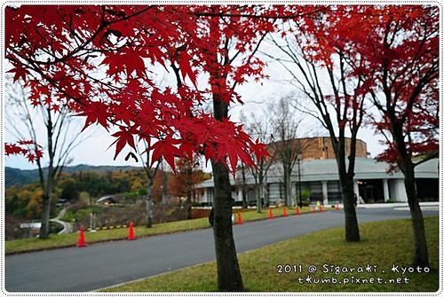 2011-11-18 11.07.52.jpg