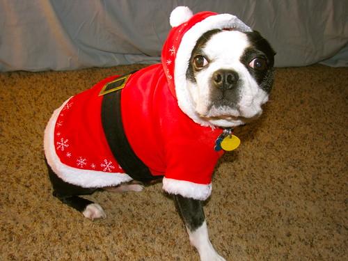 Santa Tanner!