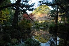 Kyoto Autumn leaves Japan Heian Shrine 平安神宮