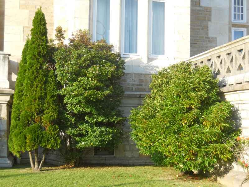 Jardines de Palacio de la Magdalena