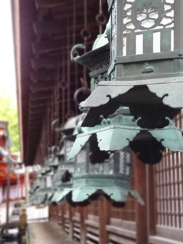 Kasuga Taisha Temple - Nara by girl from finito