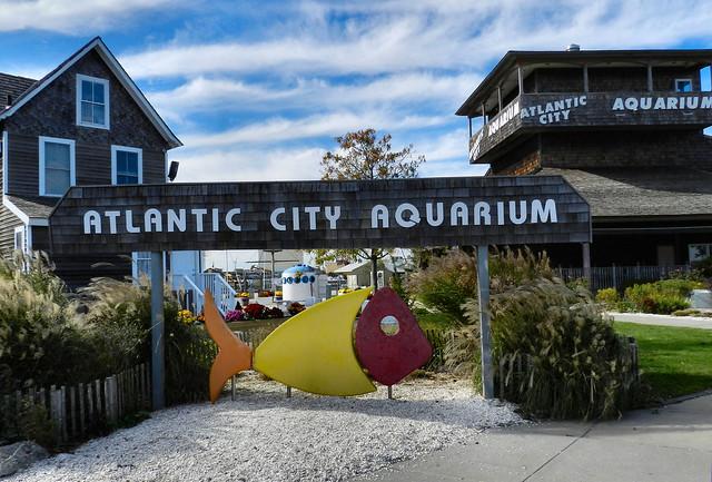 Atlantic City Aquarium Flickr Photo Sharing