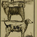 Histoire naturelle, générale et particulière, avec la description du Cabinet du roi. Tome I.