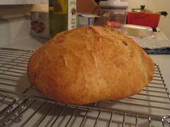 I made bread!