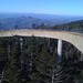 The last part of the ramp to the top of the clingman's dome lookout tower