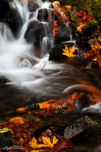 longexposure autumn leaves leaf fallcolors waterfalls pacificnorthwest columbiagorge stevenlamar lightfxstudio