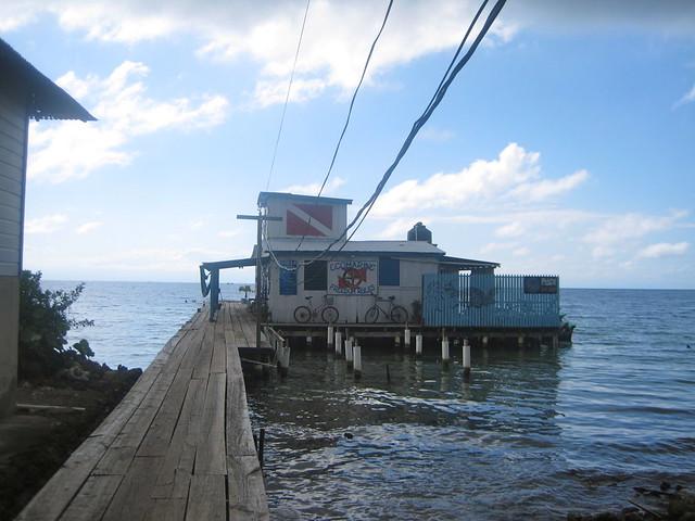 dive shop and PADI certifications on utila honduras