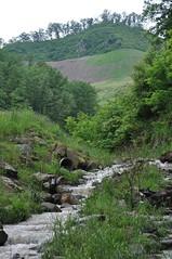Stream Below Two Ponds