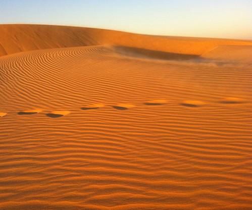 africa sahara sand desert footprints westafrica sanddune sanddunes mauritania