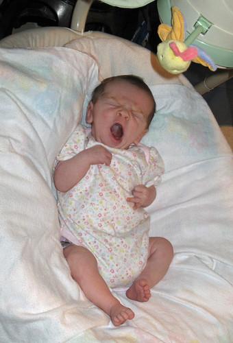 The-Yawn